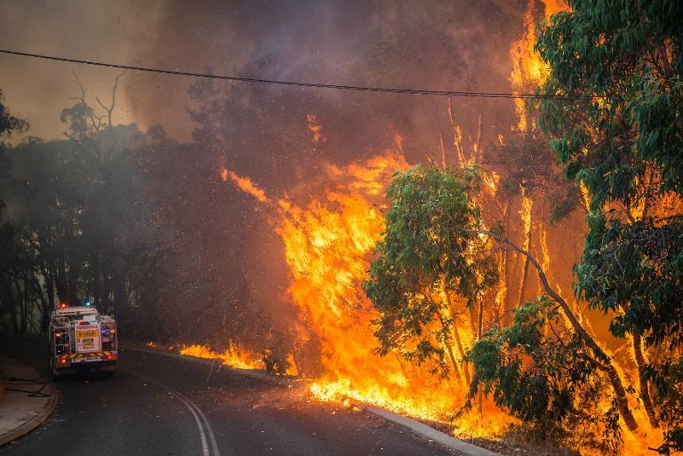 A wildfire along the edge of the road next to a firetruck in the Stoneville area, a suburb east of Perth in the state of Western Australia, is shown January 12, 2014 in this Department of Fire and Emergency Services photo