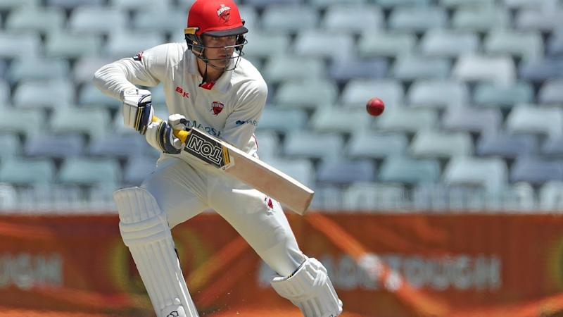 South Australia's Alex Carey is 74 not out at lunch on day three of the Shield clash against WA