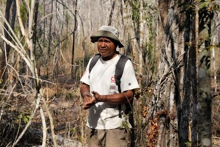 Anselme Toto Volahy, Project Manager for the Durrell Wildlife Conservation Trust Menabe programme is seen in a burned forest inside the Menabe Antimena protected area near the city of Morondava