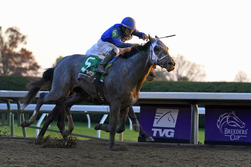 FILE - Jockey Luis Saez rides Essential Quality to win the Breeders' Cup Juvenile horse race at Keeneland Race Course in Lexington, Ky., in this Friday, Nov. 6, 2020, file photo. Essential Quality is expected to be the first gray horse favored to win the Kentucky Derby in 25 years. (AP Photo/Michael Conroy, File)