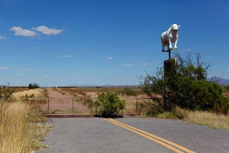 A road abruptly ends next to a sign for a cattle ranch near Douglas, Arizona, United States, October 10, 2016. REUTERS/Mike Blake