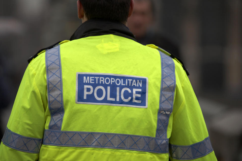 Back view of metropolitan police officer