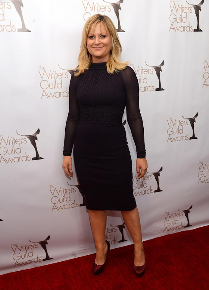 Amy Poehler arrives at the 2013 WGAw Writers Guild Awards at JW Marriott Los Angeles at L.A. LIVE on February 17, 2013 in Los Angeles, California.  (Photo by Jason Kempin/Getty Images for WGAw)