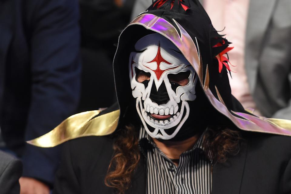 La Parka is seen  during World Day Against Cancer at city hall on February 08, 2017 in Mexico City, Mexico (Photo by Carlos Tischler/NurPhoto via Getty Images)