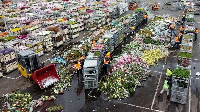 With Mothers Day approaching it would normally be the moment for millions to 'say it with flowers' -- but the virus has put paid to that
