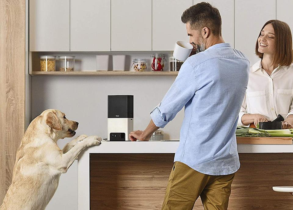 Pet owners are loving the Petcube Bites 2 Wi-Fi Pet Camera - and it's on sale now. Image via Amazon.