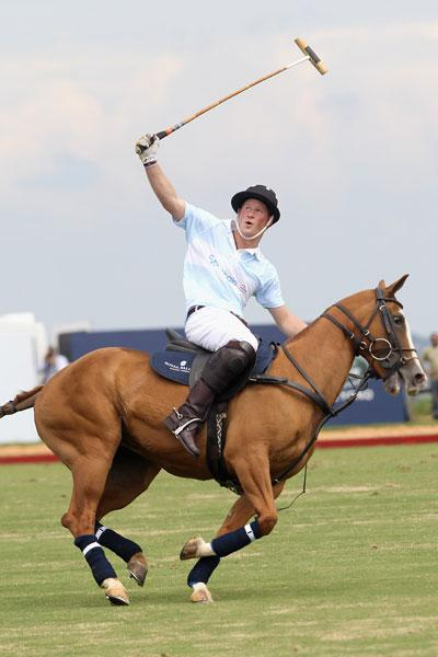 harry polo