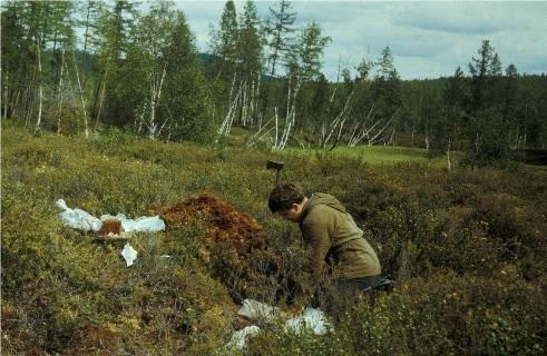 1st Meteorites from 1908 Tunguska Explosion Possibly Found