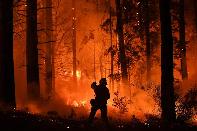 <p>A firefighter tries to control a back burn as the Carr fire continues to spread towards the towns of Douglas City and Lewiston near Redding, Calif. on July 31, 2018. (Photo: Mark Ralston/AFP/Getty Images) </p>