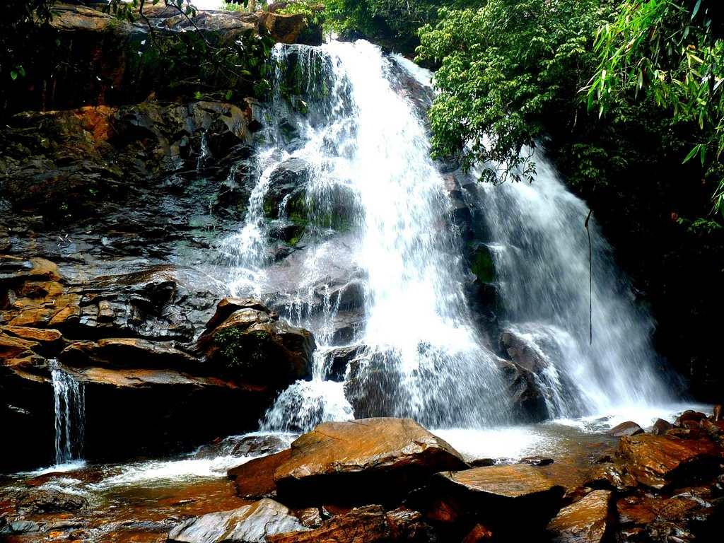 "Sirimane Falls in Kigga in Karnataka's Chikmagalur district is about 22 km from the famous temple town of Sringeri. <br><br>By <a target=""_blank"" href=""http://www.flickr.com/photos/21944021@N05/"">kayceevinay</a>"