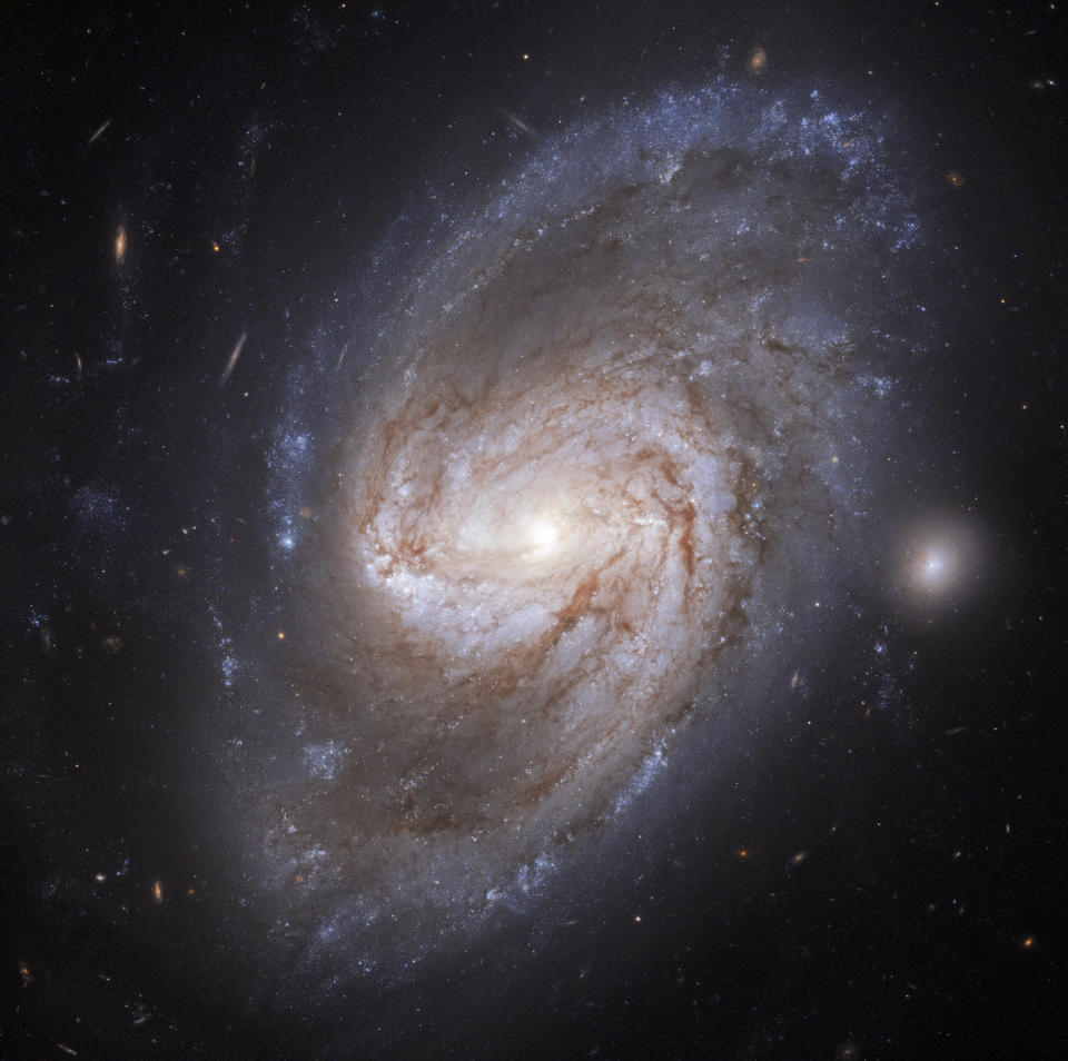 This new image from the Hubble Space Telescope features the barred spiral galaxy NGC 3583. Located some 98 million light-years away from Earth in the constellation Ursa Major, NGC 3583 is about three-quarters the size of our Milky Way galaxy. But while the Milky Way has four distinct spiral arms that wrap around its galactic core, NGC 3583 has two long arms that twist out into the universe. Astronomers have observed two supernova explosions in this galaxy, one in 1975 and then again in 2015.