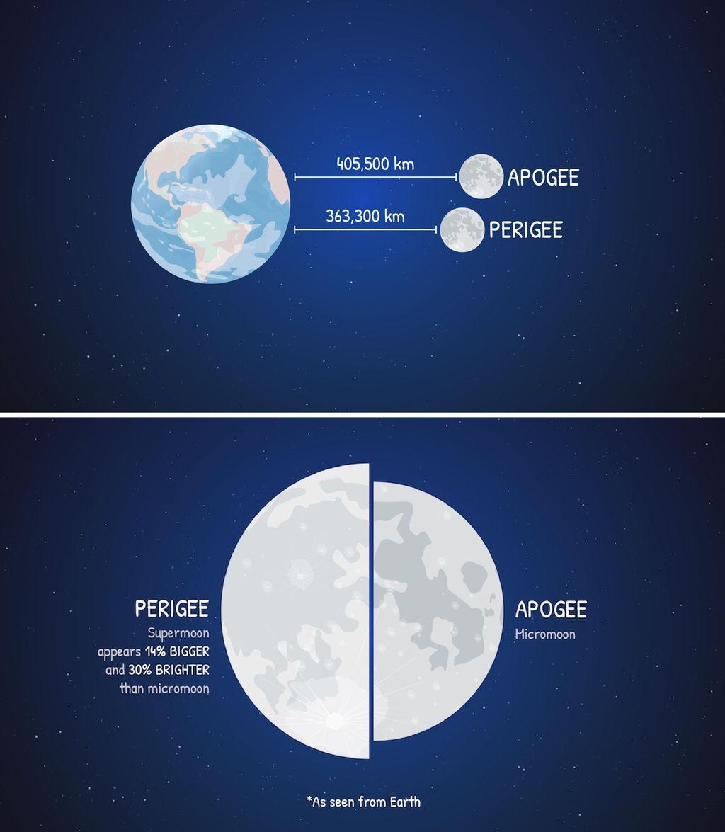 Due to the moon's elliptical orbit, its distance from Earth varies by about 12 percent, bringing it closer (perigee) and farther (apogee) during every 27.3 day circuit of Earth. The moon runs through its phases on a separate cycle of 29.5 days. From time to time, the two cycles synchronize for a few months, allowing the moon to be full while near perigee, causing it to be up to 30 percent brighter and 7 percent larger than average. The three full moons in December 2017 and January 2018 are all supermoons. <cite>NASA/JPL-Caltech</cite>