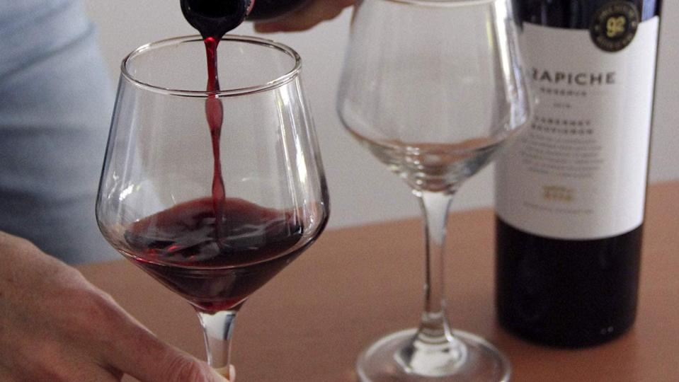 <p>If you love wine, the <span>Malbecs and More: A Virtual Wine Tasting Across Argentina</span> ($20) is a must. Learn the history of Argentine wine making and discover locally made brands.</p>