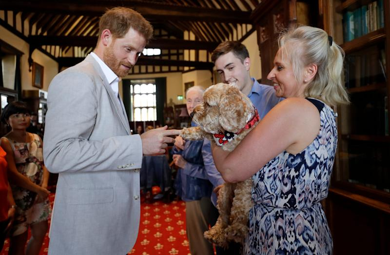 Pooches love Prince Harry, as shown when he met Bella the cockapoo with Annegret Finlay and Karsten Finlay, at Dr Jane Goodall's Roots & Shoots global leadership meeting at St. George's House, Windsor Castle, July 23, 2019.