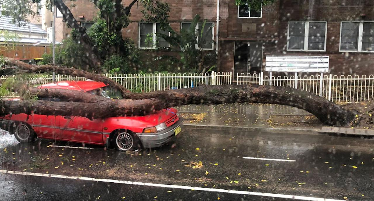 <p>One person died and two were injured after Sydney was lashed by more than 120mm of rain in just a few hours on Wednesday morning. Source: Twitter/ StoreyNic </p>