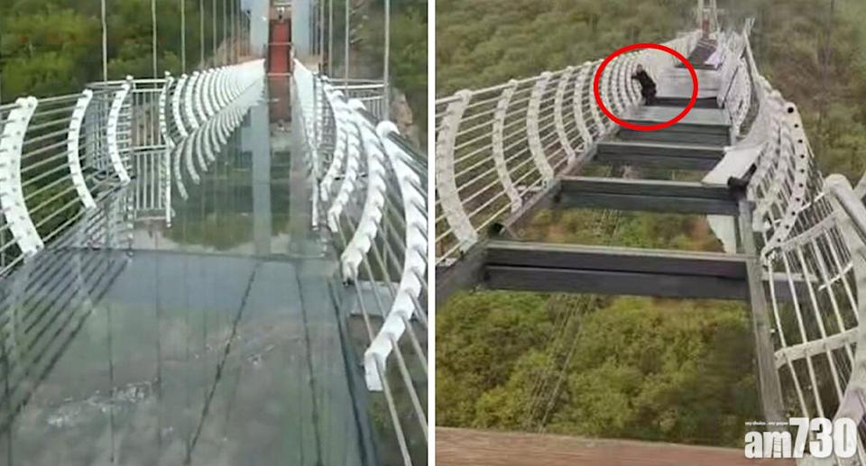 The tourist was forced to hang on to the bridge at Piyan Mountain after strong winds damaged the glass bottom. Source: Twitter/@MattCKnight