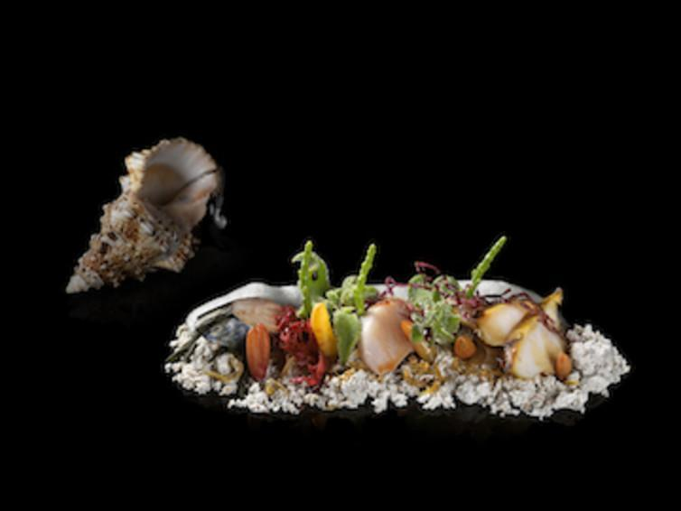 """<span class=""""caption"""">Heston Blumenthal's Sounds of the Sea seafood dish.</span> <span class=""""attribution""""><span class=""""source"""">Sergio Coimbra</span>, <a class=""""link rapid-noclick-resp"""" href=""""http://creativecommons.org/licenses/by/4.0/"""" rel=""""nofollow noopener"""" target=""""_blank"""" data-ylk=""""slk:CC BY"""">CC BY</a></span>"""
