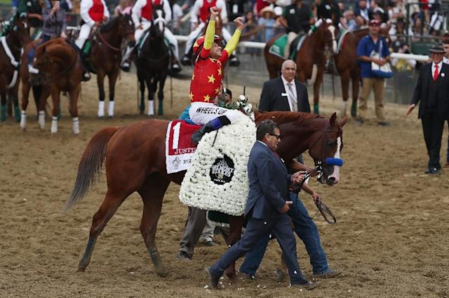 Jockey Mike Smith celebrates atop of Justify at the 150th running of the Belmont Stakes at Belmont Park on June 9, 2018 in Elmont, New York (AFP Photo/AL BELLO)