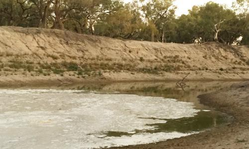 After years of drought, water reaches parched Menindee