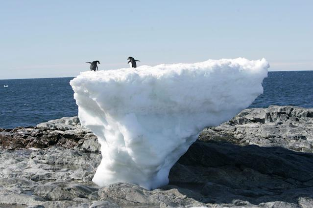 <p>Adelie penguins stand atop a block of melting ice on a rocky shoreline at Cape Denison, Commonwealth Bay, in East Antarctica, Jan. 1, 2010. (Photo: Pauline Askin/Reuters) </p>