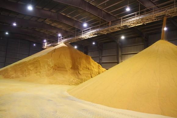 Dried distillers grains with solubles sitting in a warehouse.