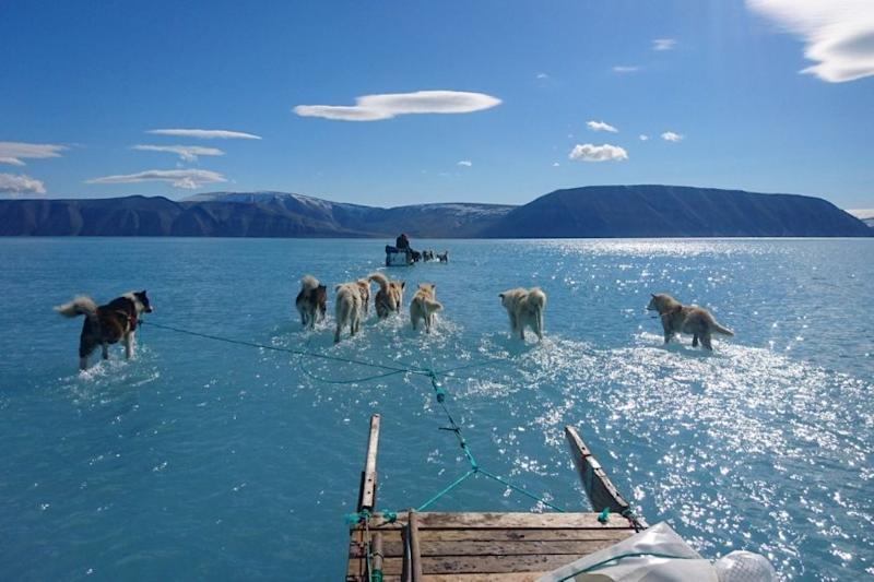 This Photo of Greenland Flooding is Exactly Why You Need to Care About Climate Change