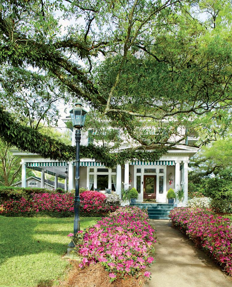 <p>It's hard to imagine spring in the South without the iconic evergreen bushes. </p>