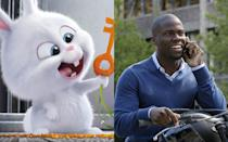 <p>Forbes named the American comic the 6th highest-paid celebrity of 2016 with £67m, most of this comes from his comedy tours, but starring roles in 'The Secret Life of Pets' and 'Central Intelligence' have cemented his reputation as a bankable star.</p>