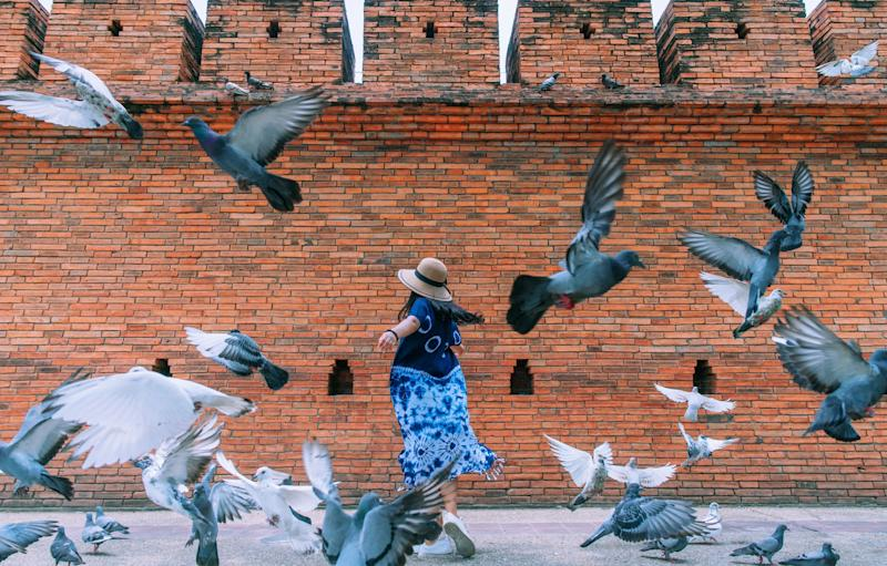 Would this photo be possible without a 'pigeon spooker'? - getty