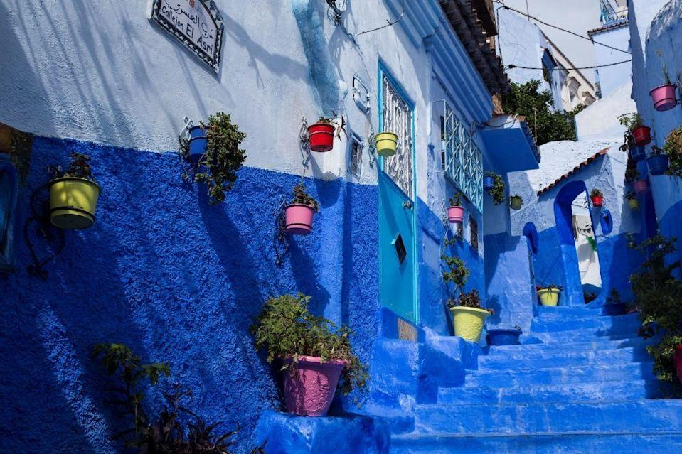 <p>A two-toned blue exterior in Morocco is accented with a colorful vertical garden.</p>