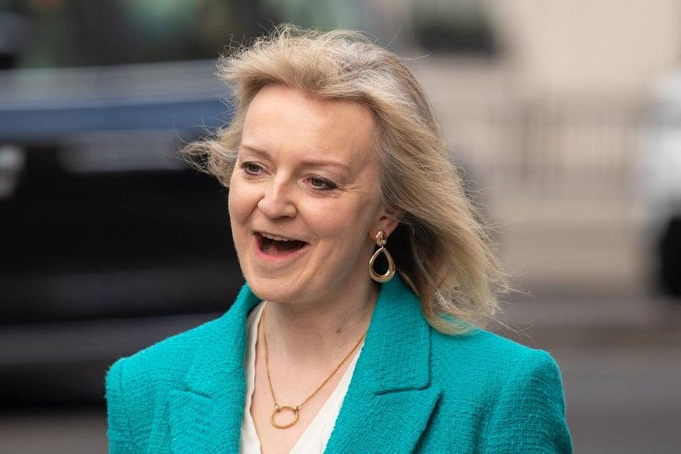 New Foreign Secretary Liz Truss has been touted as a potential leader of her party (Dominic Lipinski/PA) (PA Wire)