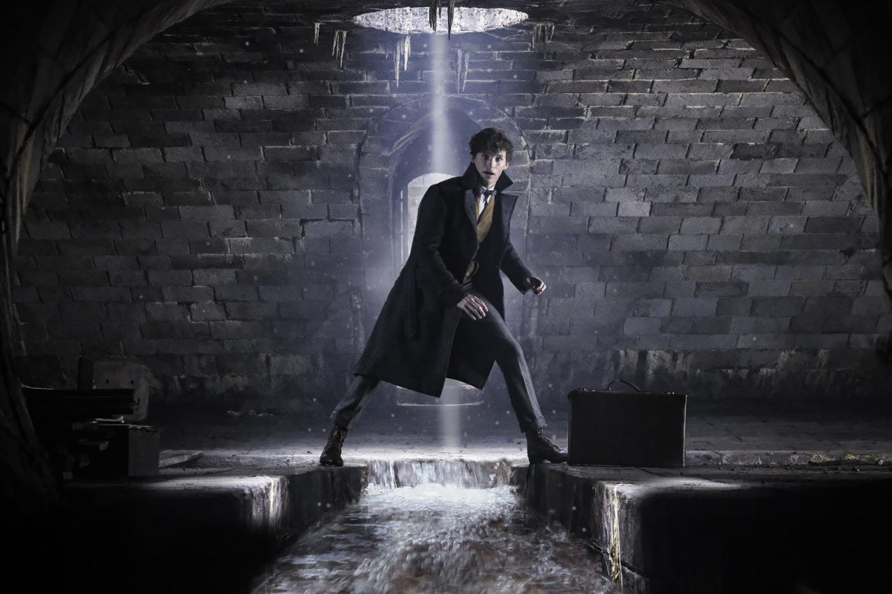 <p>Since the events of the first <em>Fantastic Beasts</em>, Newt has published his guide to magical creatures and is a celebrity in the wizarding world.<br /> (Photo: Jaap Buitendijk/Warner Bros.) </p>