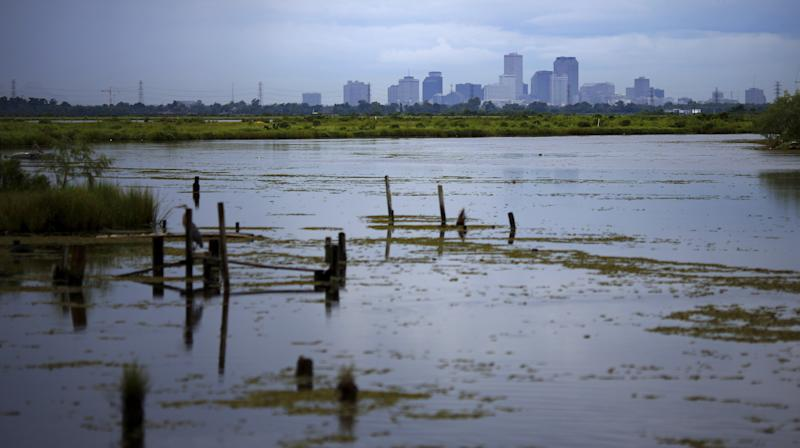 New Orleans Looks To Amsterdam For A New Flood Plan
