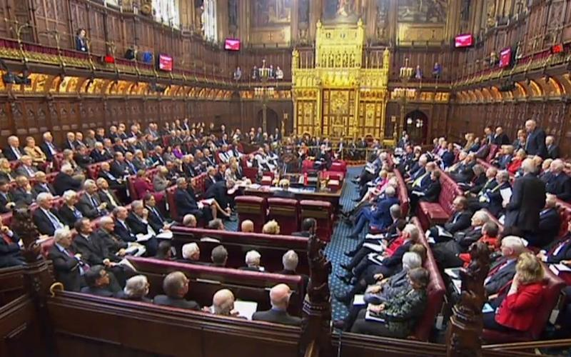Peers in the chamber - Credit: afp