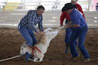 Wade Earp, 49, (L) competes in the Goat Dressing event at the International Gay Rodeo Association's Rodeo In the Rock in Little Rock, Arkansas, United States April 26, 2015.REUTERS/Lucy Nicholson