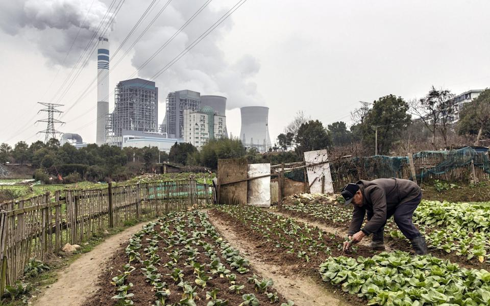 A man tends to vegetables growing in a field as emissions rise from cooling towers at a coal-fired power station in Tongling, Anhui province, China - Qilai Shen/Bloomberg