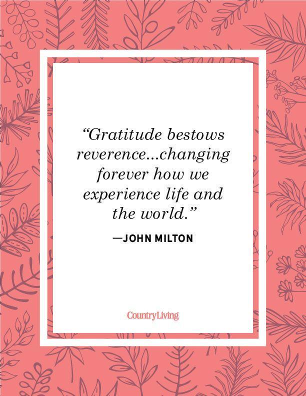 """<p>""""Gratitude bestows reverence...changing forever how we experience life and the world.""""</p>"""