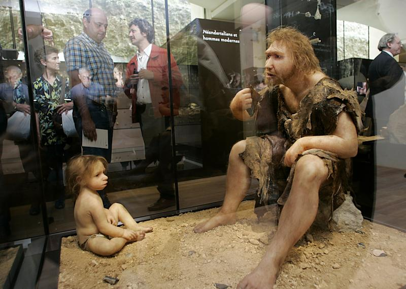 A picture taken 19 July 2004 shows visitors of the Museum for Prehistory in Eyzies-de-Tayac, France, looking at a Neanderthal man ancestor's reconstruction (AFP Photo/Patrick Bernard)