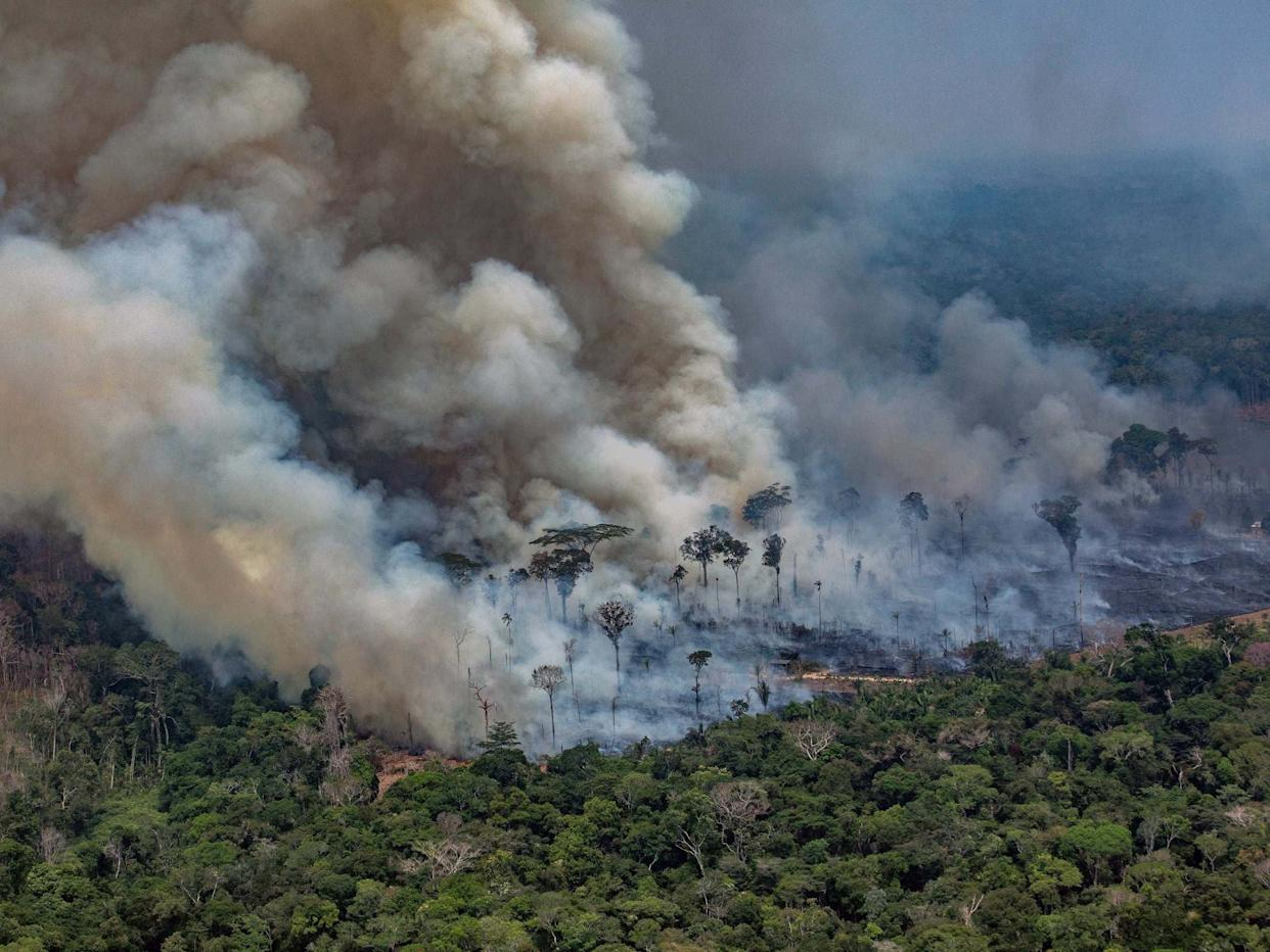 Smoke billows from fires in the Amazon basin: AFP/Getty Images