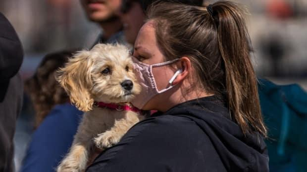 A woman in a mask carries a dog in Ottawa on April 3, 2021, the first day of a provincewide shutdown intended to halt the spread of COVID-19 cases. (Mathieu Theriault/Radio-Canada - image credit)