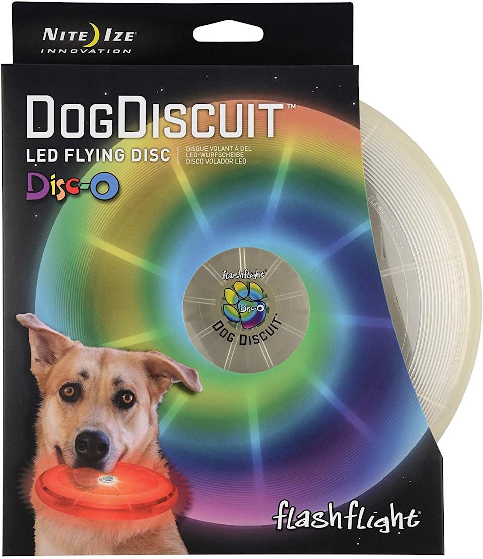 <p>Playing fetch just got a huge upgrade with this <span>Nite Ize Flashflight LED Dog Discuit</span> ($13).</p>