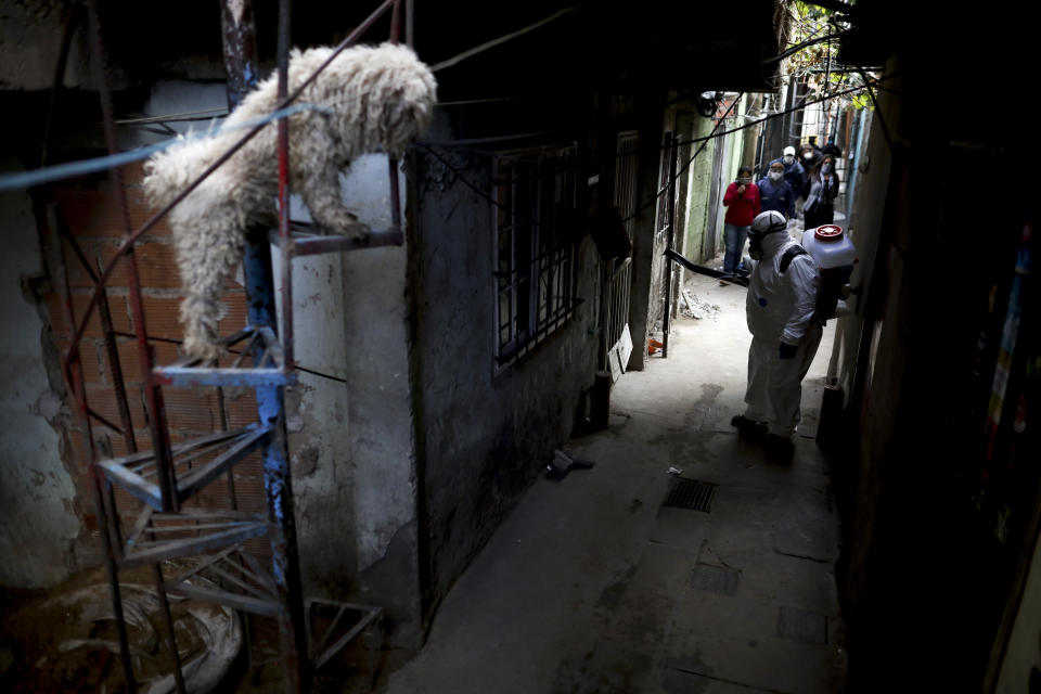 "FILE - In this May 5, 2020 file photo, a dog stands on a staircase where a worker disinfects the streets of the ""Villa 31"" neighborhood during a government-ordered lockdown to curb the spread of the new coronavirus in Buenos Aires, Argentina. Argentina reached 1 million confirmed coronavirus cases on Monday, Oct. 19, 2020, according to the Ministry of Health. (AP Photo/Natacha Pisarenko, File)"
