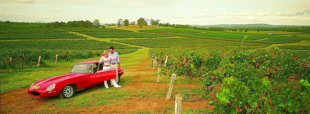 Drive through the picturesque vineyards of Hunter Valley in New South Wales.