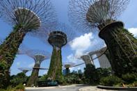 """Singapore's Gardens by the Bay has giant plant-covered """"trees"""" and massive greenhouses with rare plant species"""