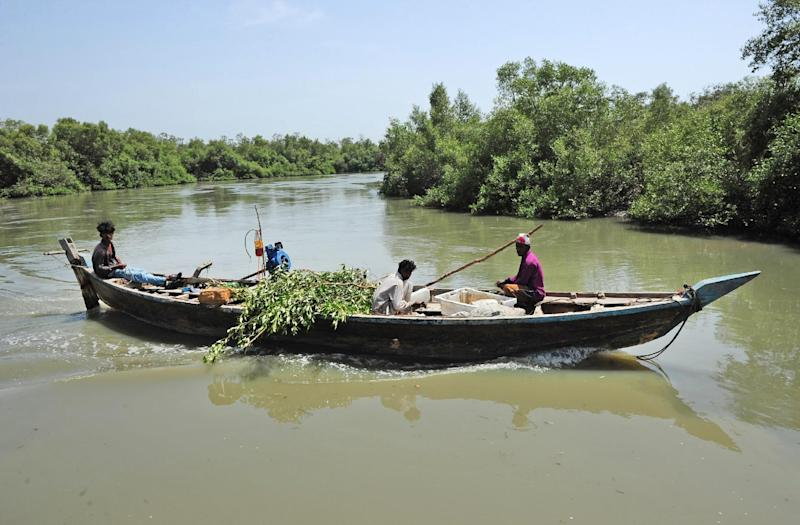 A boat laden with chopped mangroves passes along an inlet close to the Arabian Sea in Karachi (AFP Photo/Asif Hassan)