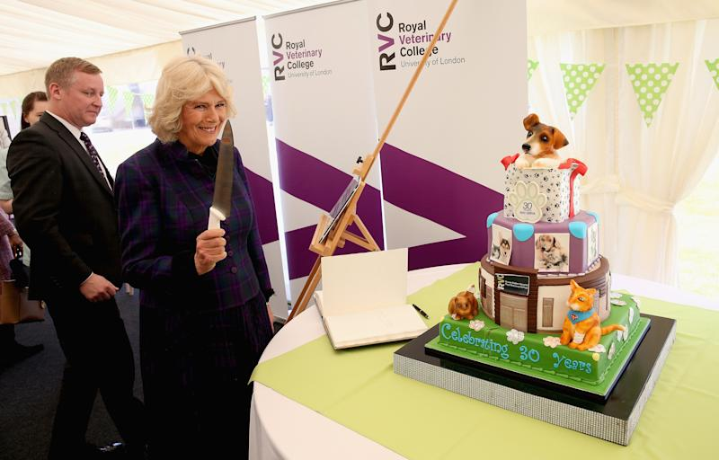 Camilla Parker Bowles preparing to cut a cake at the 30th anniversary celebration of the Queen Mother Hospital for Small Animals in Hatfield, England, April 2016.