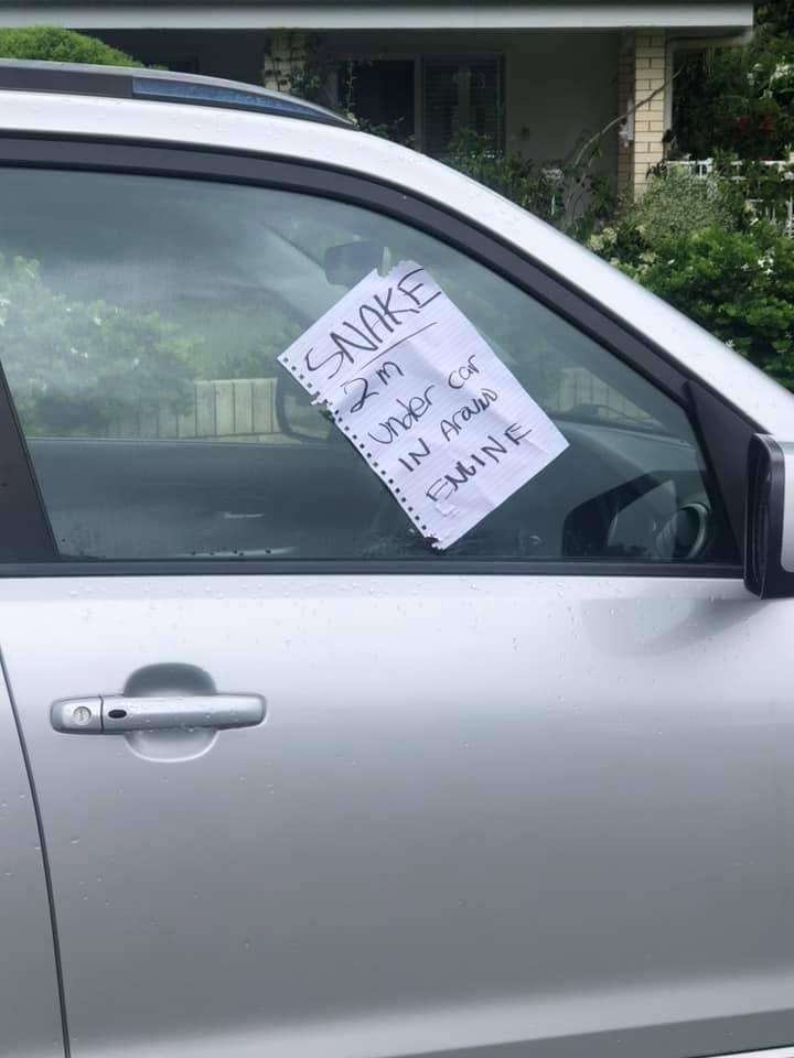 """A note on a car window says, """"SNAKE 2m under car in around engine'."""