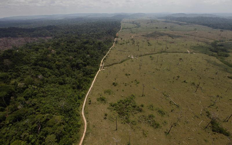 Brazil deforestation hits record low