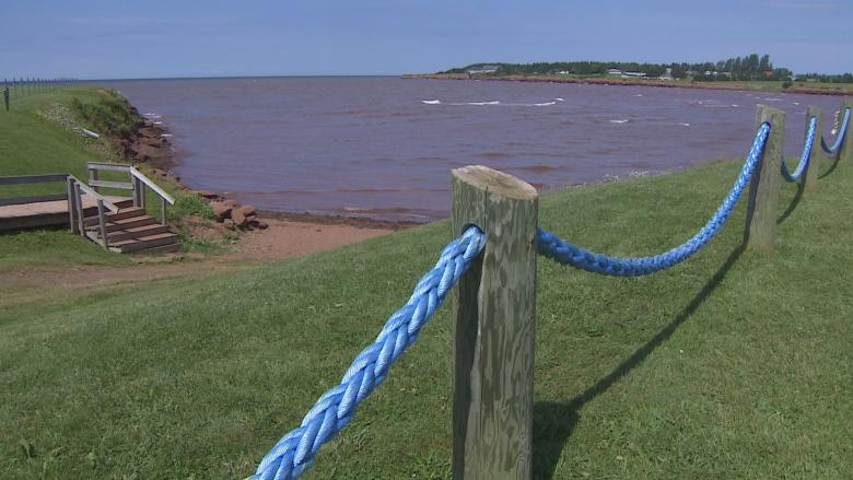 Why P.E.I. isn't testing the water-quality at provincial beaches this summer