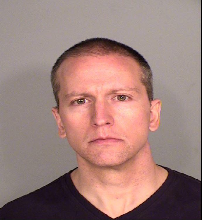 Fired Minneapolis Police Officer Derek Chauvin in his booking photo.